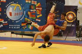 Pokaz sztuki walki AŁYSZ na Igrzyskach TAFISA 2016 ( VIDEO )