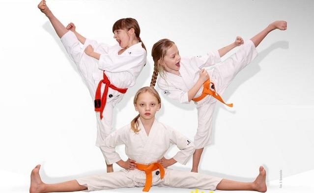 IX Puchar Świata w Karate Tradycyjnym ORLEN 2017